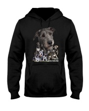 Irish Wolfhound Awesome Family 0701 Hooded Sweatshirt thumbnail