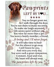 Vizsla Pawprints Poster 2201 11x17 Poster front