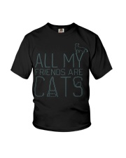 All My Friends Are Cats Youth T-Shirt thumbnail
