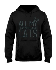 All My Friends Are Cats Hooded Sweatshirt thumbnail