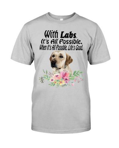 With Labs It's All Possible When It's All Possible