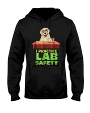 I Practice Lab Safety Funny Labrador Dog  Hooded Sweatshirt thumbnail