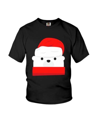 The santa bear