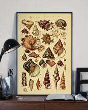 Turban Seashell 11x17 Poster lifestyle-poster-2