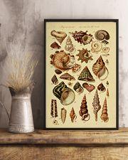 Turban Seashell 11x17 Poster lifestyle-poster-3