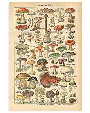 Mushroom Science Illustration 1909 11x17 Poster front