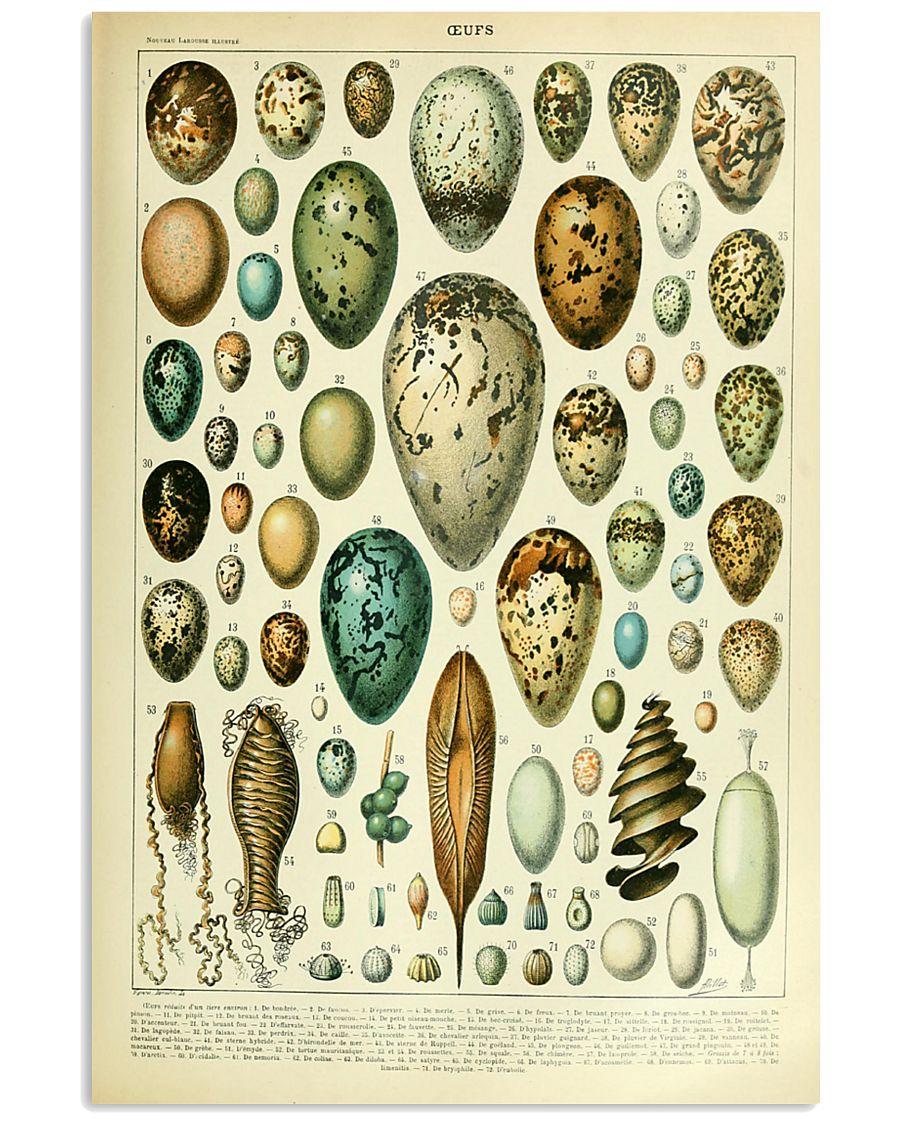 Vintage Egg Print 11x17 Poster