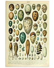 Vintage Egg Print 11x17 Poster front