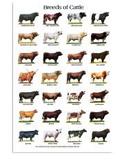Breeds of Cattle 11x17 Poster front