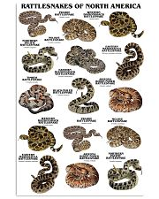 Rattlesnakes Of North America 11x17 Poster front