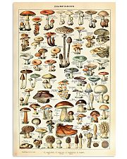 Adolphe Millot Mushrooms 11x17 Poster front