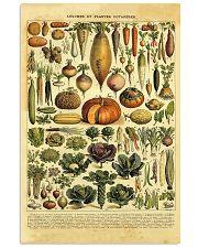 Adolphe Millot Garden Vegetables 11x17 Poster front