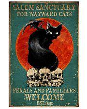 Salem Sanctuary For Wayward Cat 11x17 Poster front