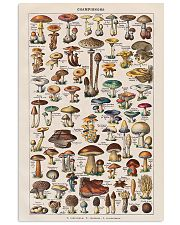 Vintage Mushroom French Chart Champignon 11x17 Poster front