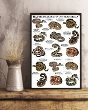 Rattlesnakes of North America 11x17 Poster lifestyle-poster-3