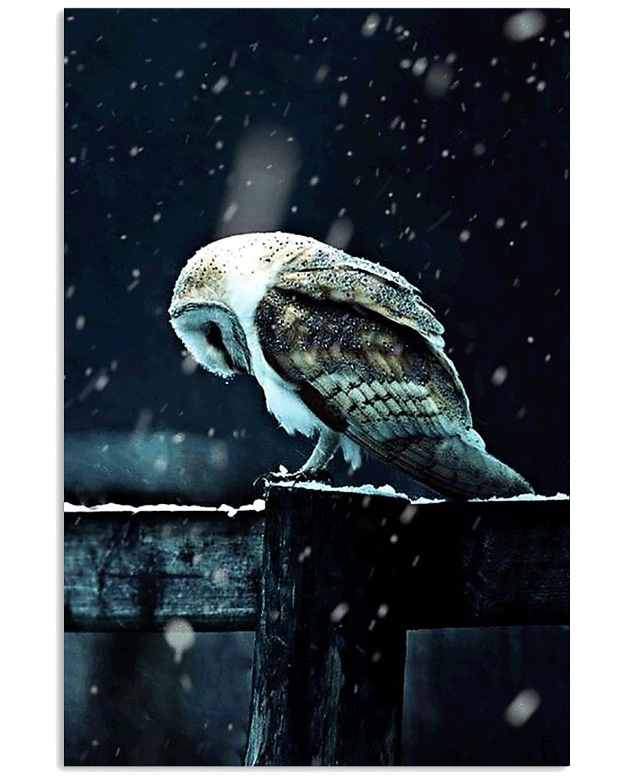Owl Spirit Art Poster 24x36 Poster