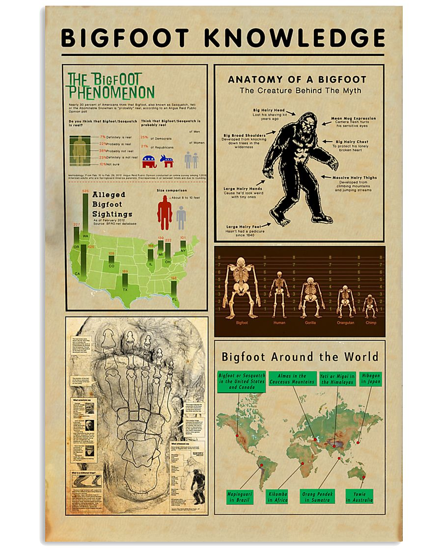 Bigfoot Knowledge - sale off 11x17 Poster