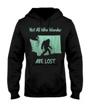 Not All Who Wander Are Lost - Washington Hooded Sweatshirt thumbnail