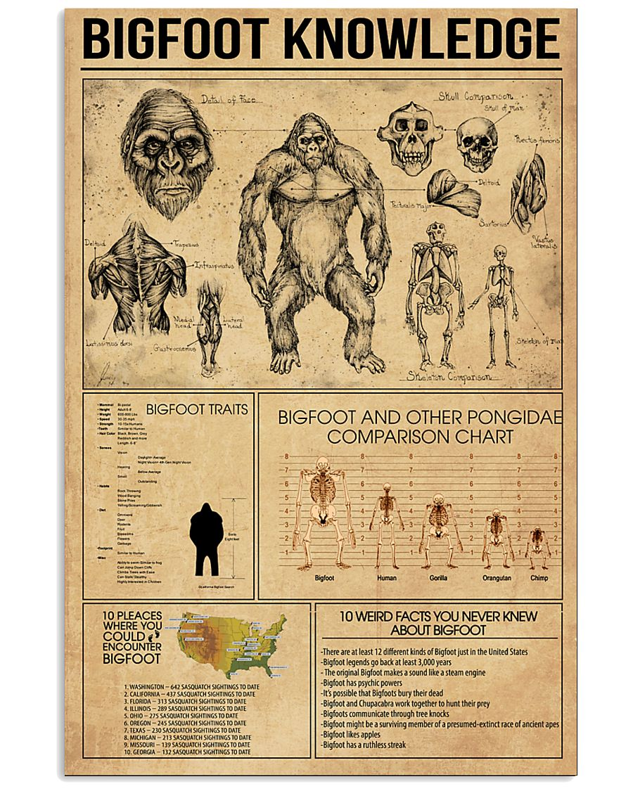 Bigfoot knowledge poster 24x36 Poster