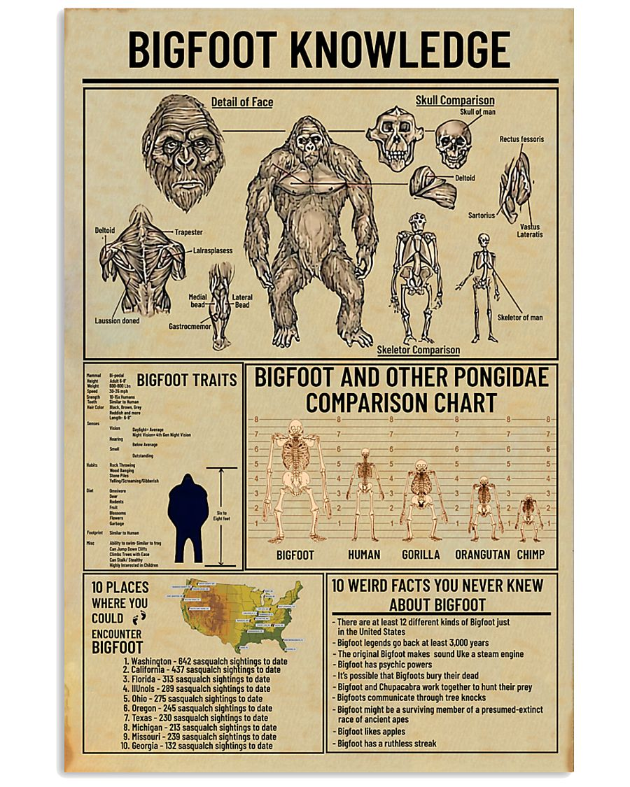Bigfoot Knowledge 2 11x17 Poster