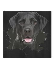 Labrador-Hole Crack Cloth face mask aos-face-mask-coverlet-lifestyle-front-02