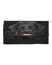 Labrador-Hole Crack Cloth face mask front