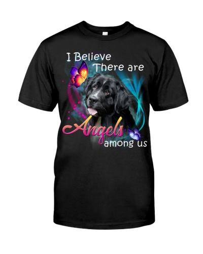 Newfoundland-02-Angels Among Us