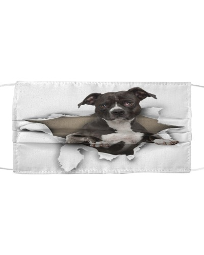 American Pit Bull Terrier-02-Face Mask-Torn02