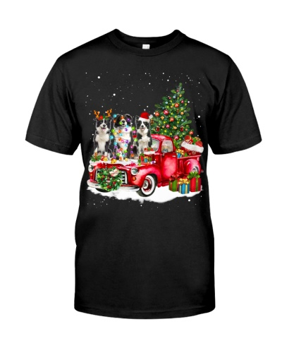Border Collie-Christmas Car