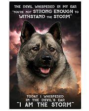Norwegian Elkhound - Storm 24x36 Poster front