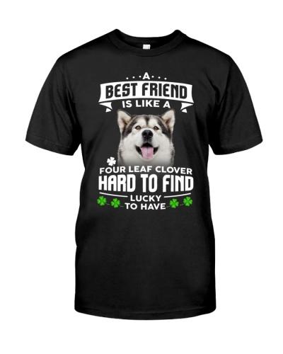 Alaskan Malamute-Best Friend