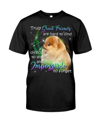 Pomeranian-Great Friends