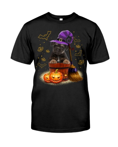 Border Terrier-Halloween-02