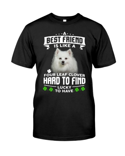 American Eskimo-Best Friend