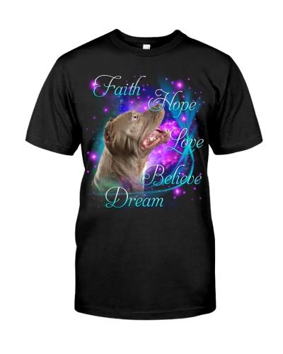 Pitbull-Believe Dream
