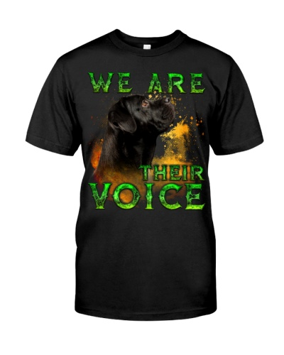 Cane Corso-02-Their Voice-02