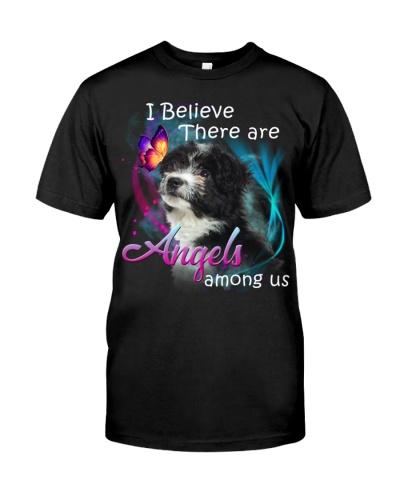 Havanese-Angels Among Us