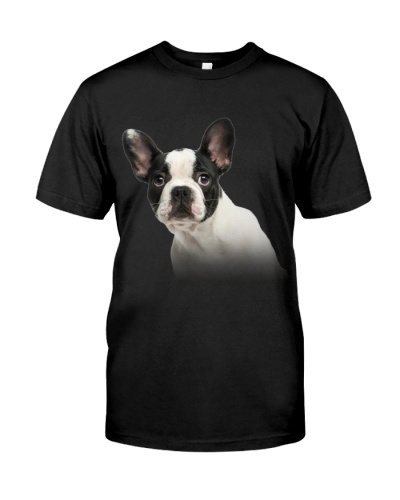 French Bulldog-03 - Only Face