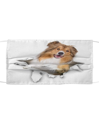 Rough Collie-Face Mask-Torn02