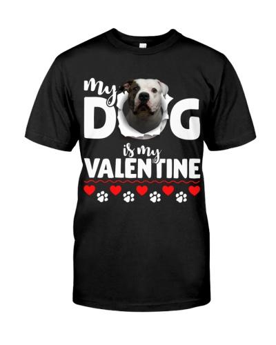 American Bulldog-My Valentine