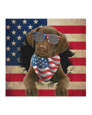 Chesapeake Bay Retriever-US Mask Cloth face mask aos-face-mask-coverlet-lifestyle-front-02