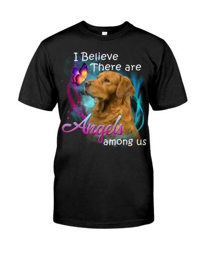 Golden Retriever-Angels Among Us
