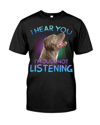 Pitbull-I Hear You 02