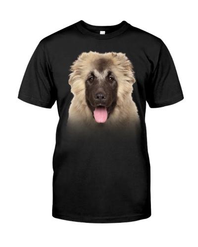 Caucasian Shepherd-Dog Face