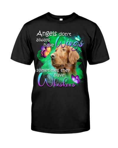 Irish Setter-02-Have Whiskers