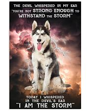Husky - Storm 24x36 Poster front