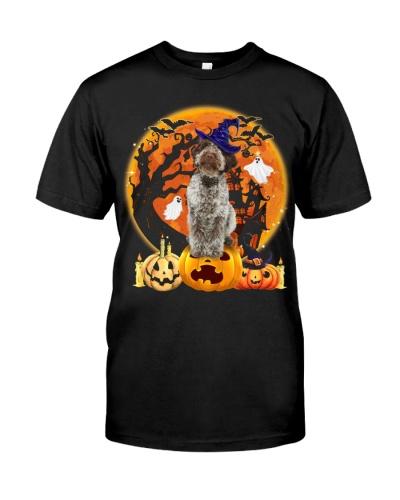 Lagotto Romagnolo-Halloween