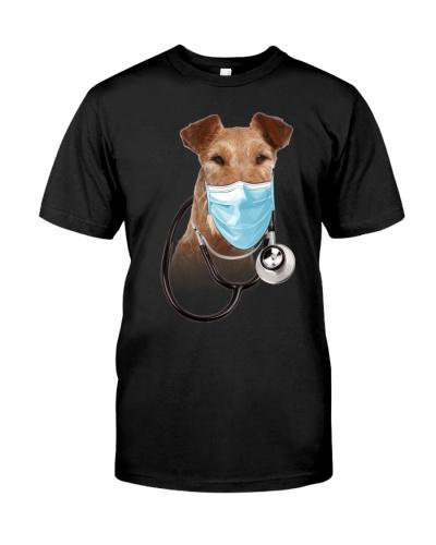 Irish Terrier-Doctor Dog