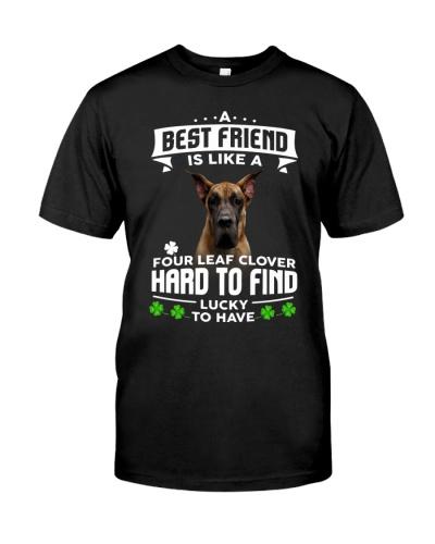 Great Dane-Best Friend