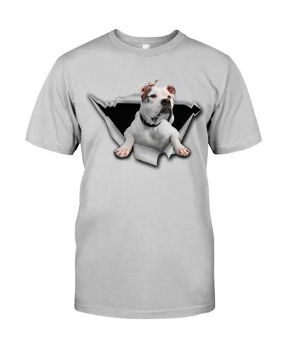 American Bulldog - Torn